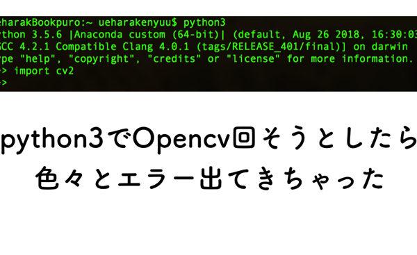 MacにOpencvを入れてPython3を走らせようと思ったけどかなりのErrorと戦った!