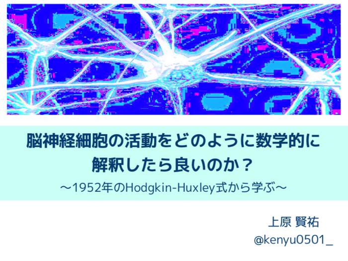 脳神経細胞の活動を数学的に書くHodgkin-Huxleyモデルについて