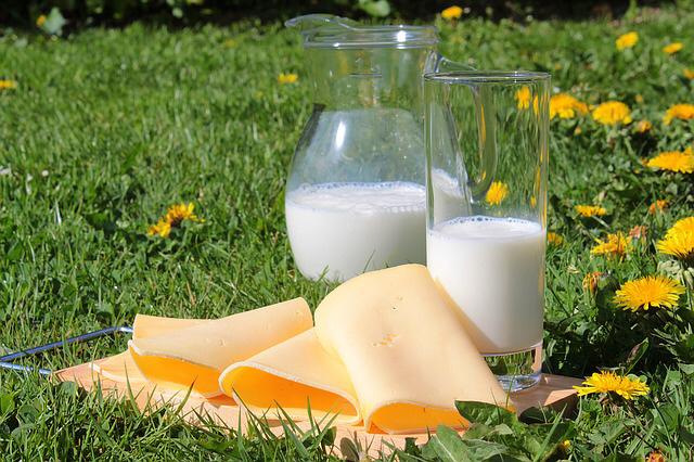 乳製品はダイエット効果があるが,「低脂肪牛乳」は体重に影響がない!?