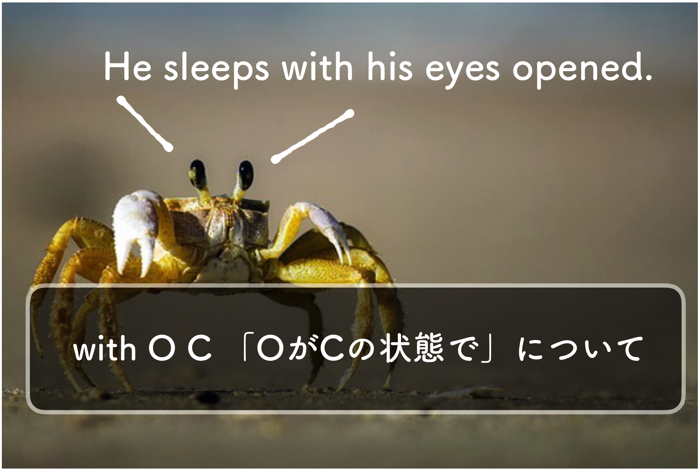 【英文法】付帯状況を表すwith+O+C「OがCの状態で」について理解する【分詞】