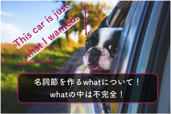 【英文法】名詞節を作るwhatについて考える【whatの中は不完全!関係代名詞】